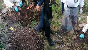 Localizan en Irapuato Guanajuato ocho fosas clandestinas, tendrían al menos 100 restos óseos
